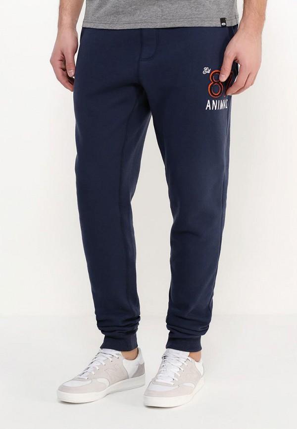 Мужские спортивные брюки Animal CL6SJ195: изображение 3