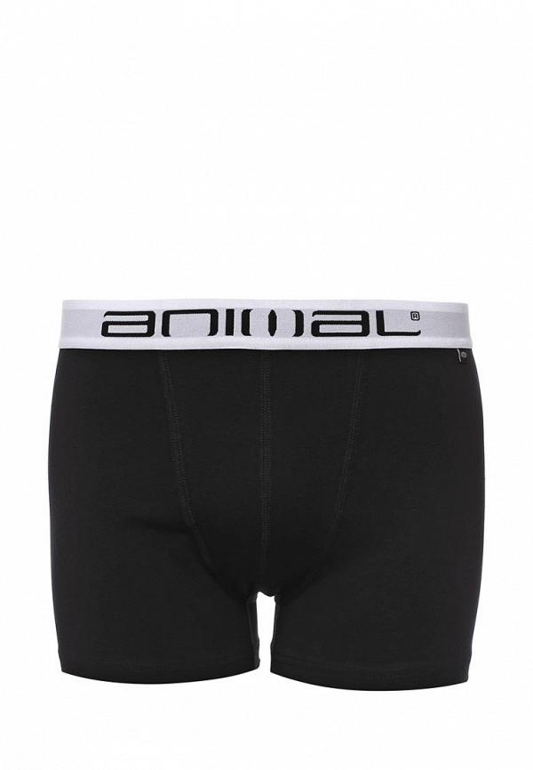Мужское белье и одежда для дома Animal CL6SJ211: изображение 4