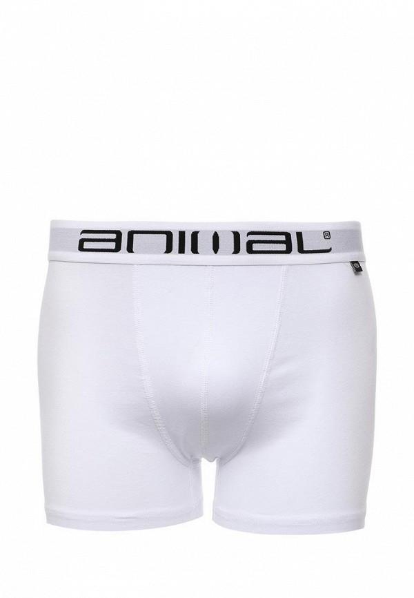 Мужское белье и одежда для дома Animal CL6SJ211: изображение 5