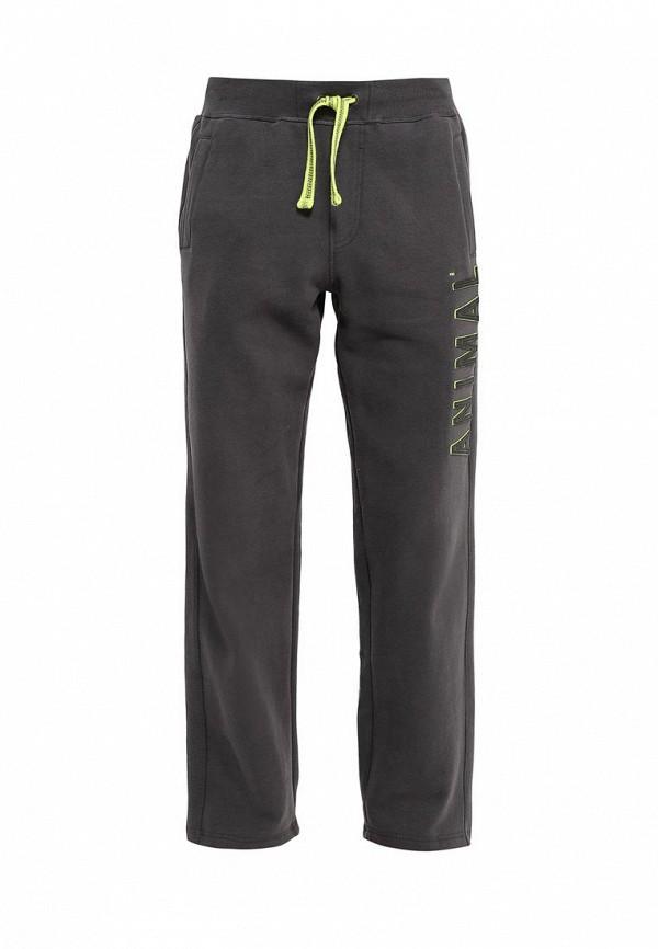 Мужские спортивные брюки Animal CL6WJ200