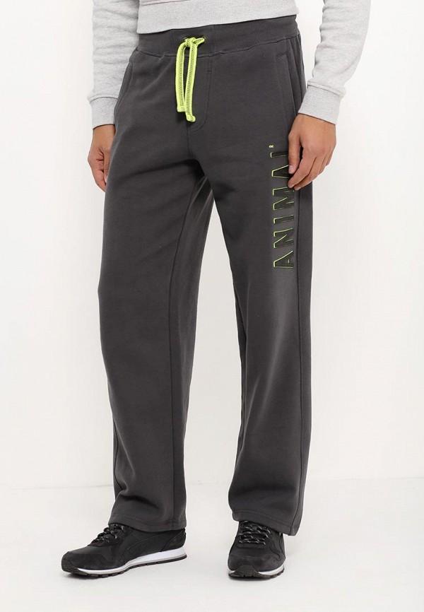 Мужские спортивные брюки Animal CL6WJ200: изображение 3