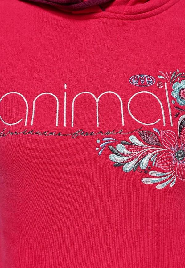 Женские худи Animal CL4WE378: изображение 2