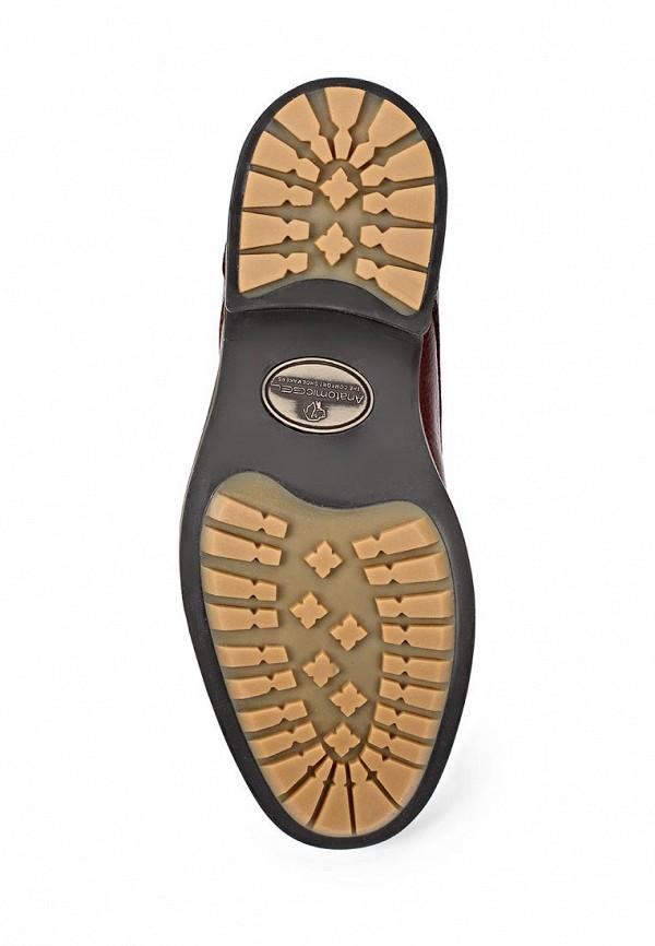 Мужские ботинки Anatomic & Co 909071: изображение 3