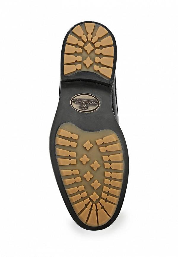 Мужские ботинки Anatomic & Co 909070: изображение 2