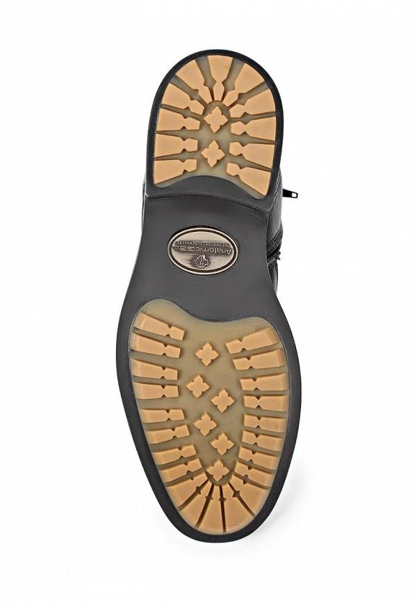Мужские ботинки Anatomic & Co 909069: изображение 3