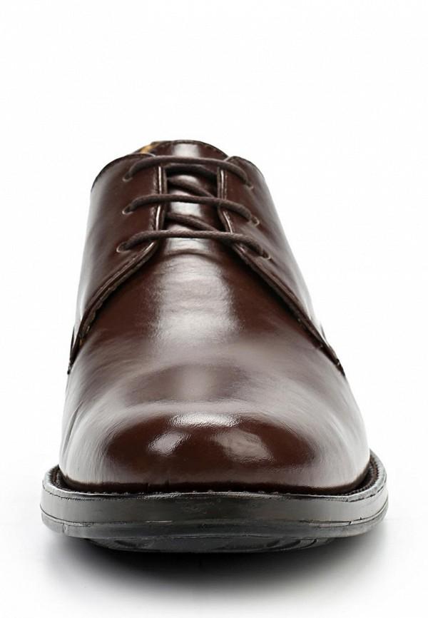 Мужские туфли Anatomic & Co 303007: изображение 4