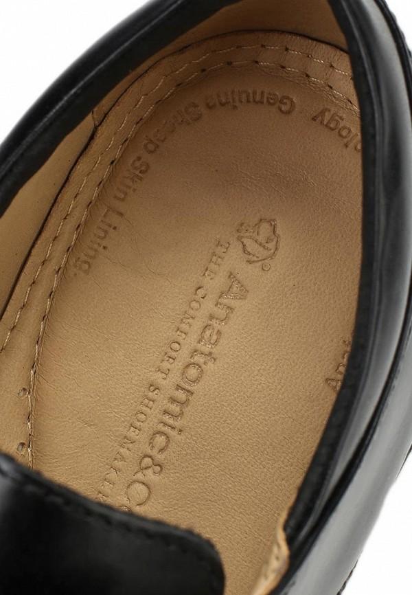 Мужские туфли Anatomic & Co 494921: изображение 7