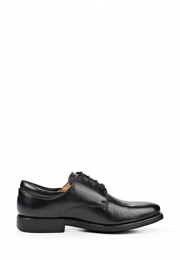 Мужские туфли Anatomic & Co 818101: изображение 4
