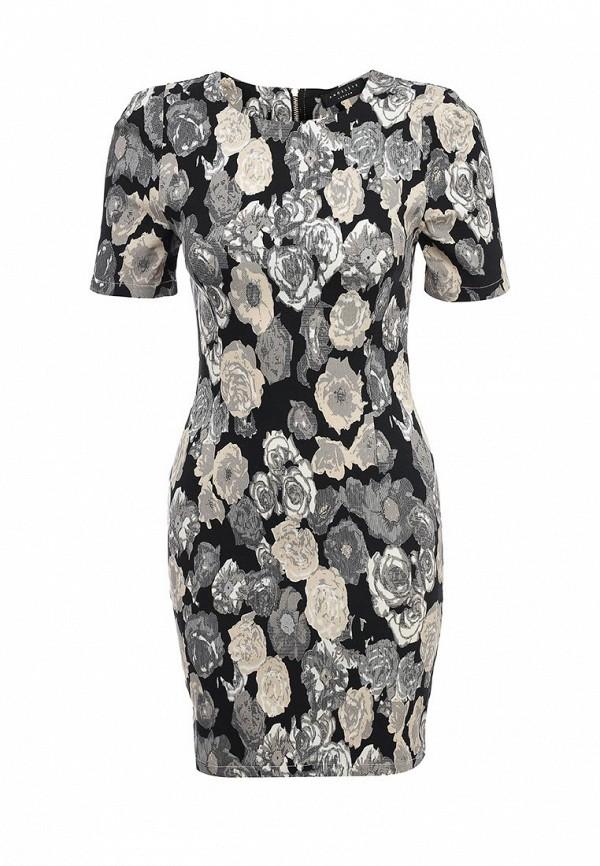 Платье-мини AngelEye London L011874: изображение 1