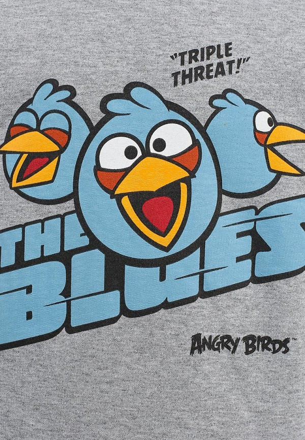 Толстовка ANGRY BIRDS (Энгри Бёрдс) AB-SHB181-ML: изображение 3