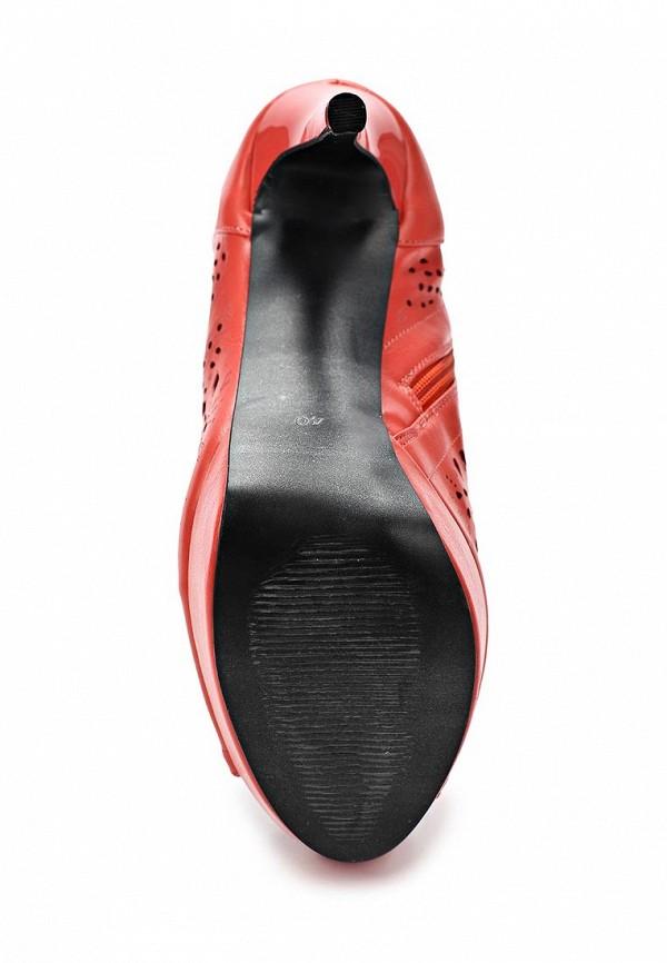 Сапоги на каблуке ARZOmania AI 275-4: изображение 4