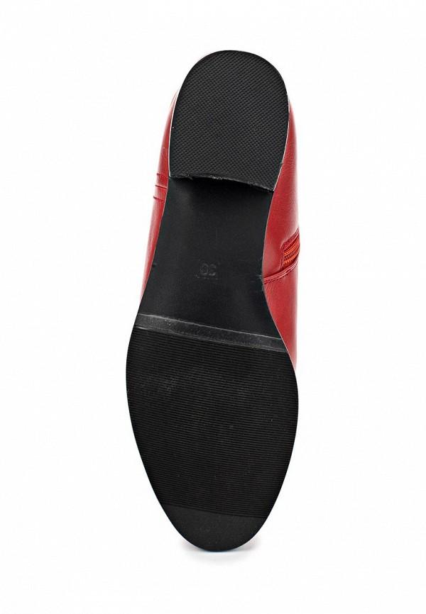 Сапоги на каблуке ARZOmania AS 511-25: изображение 3