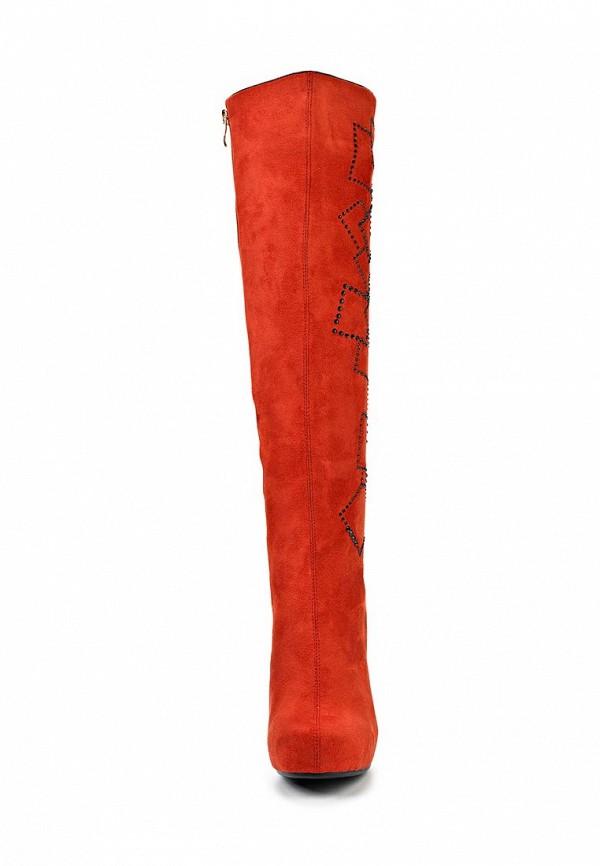 Женские сапоги ARZOmania T 014-4: изображение 5