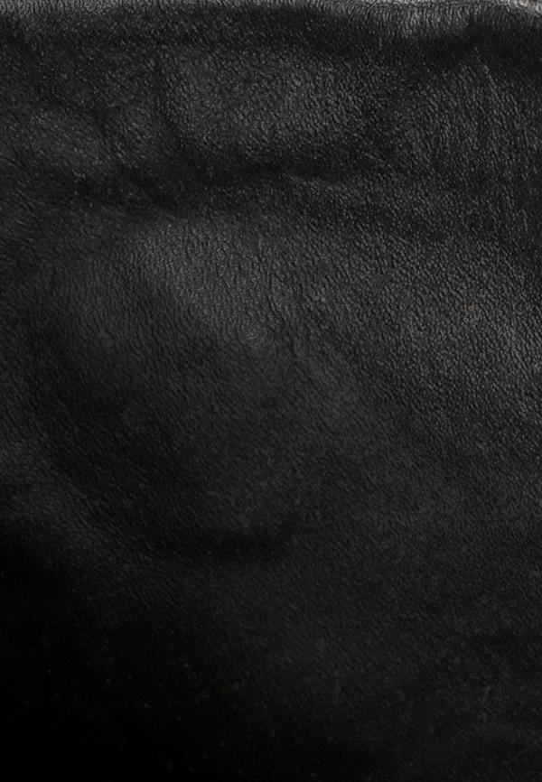 Женские кеды Armani Jeans (Армани Джинс) B55G5 63: изображение 5