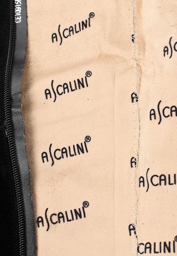Ботфорты Ascalini CE10915BF: изображение 11