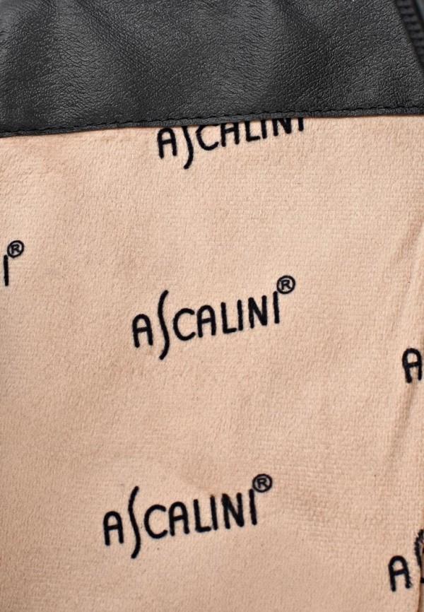 Сапоги на плоской подошве Ascalini C11174BK: изображение 12
