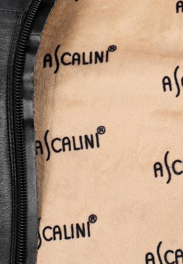 Ботфорты Ascalini C14014: изображение 12