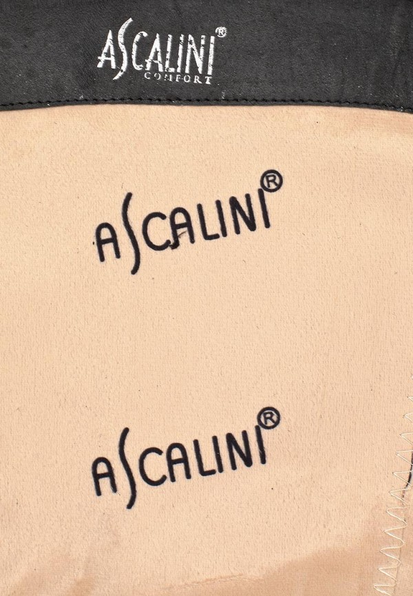 Женские сапоги Ascalini C14075: изображение 11