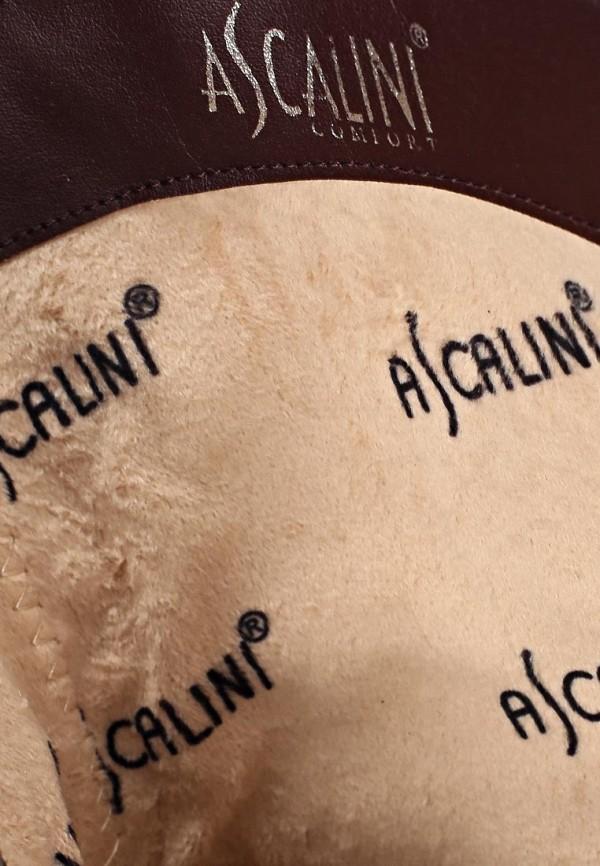 Полусапоги Ascalini D14270: изображение 7