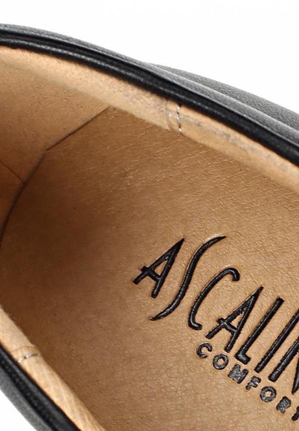 Туфли на плоской подошве Ascalini T14986: изображение 12