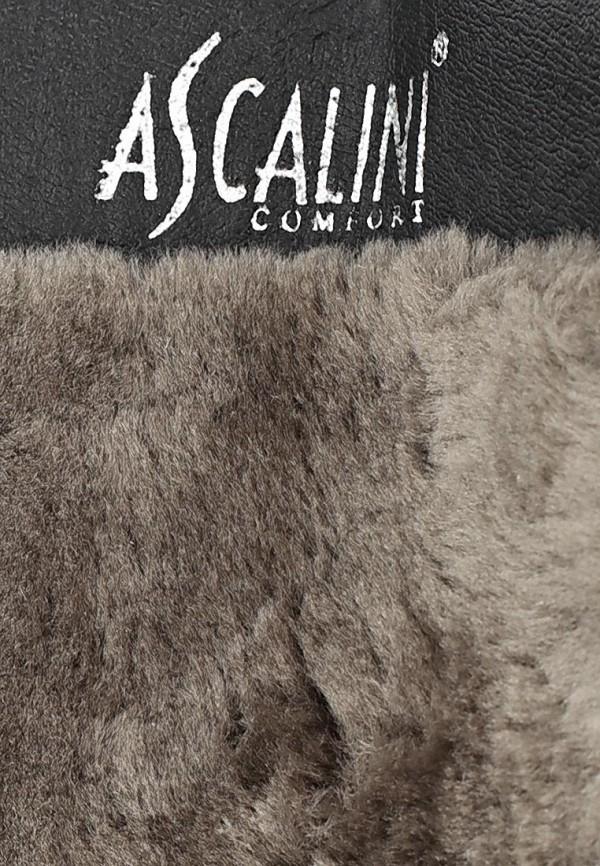 Женские сапоги Ascalini CZ7976BF: изображение 11