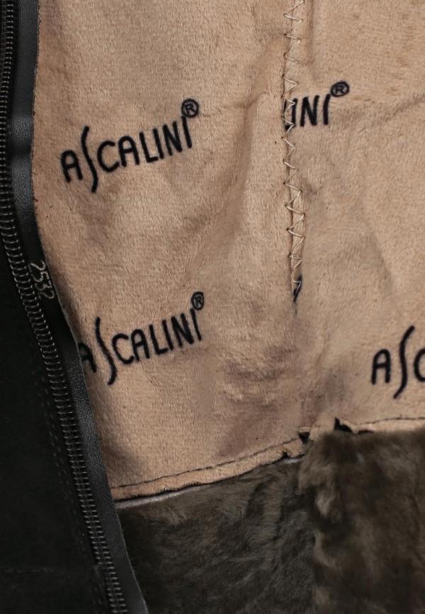Ботфорты Ascalini CE14117: изображение 7