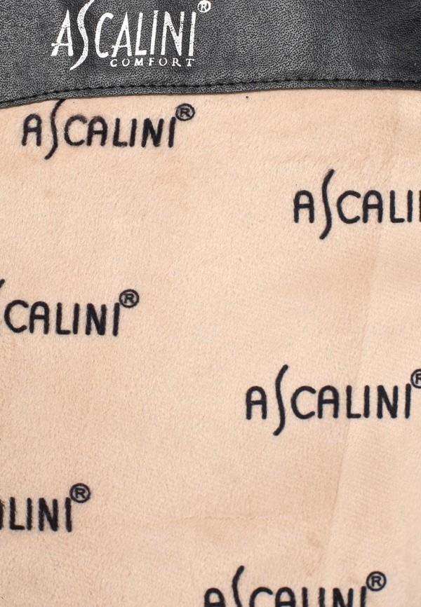 Женские сапоги Ascalini CE14941: изображение 6