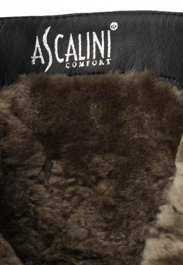 Женские сапоги Ascalini DZ13786: изображение 11