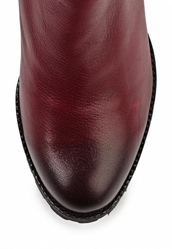 Женские сапоги Ascalini D13879: изображение 10