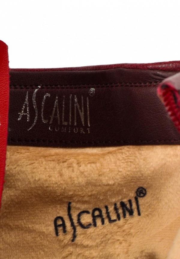 Женские сапоги Ascalini D13879: изображение 12