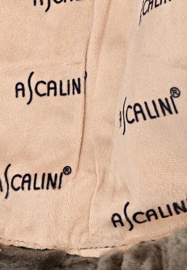 Женские сапоги Ascalini CE14524: изображение 11
