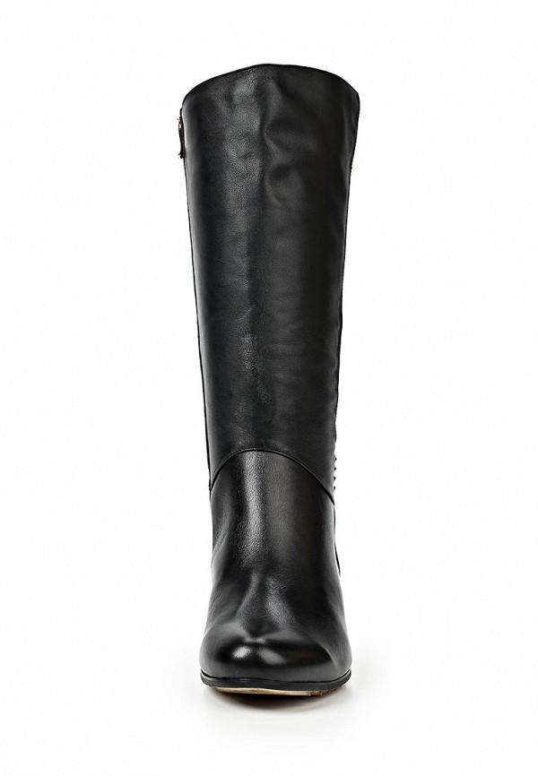 Женские сапоги Ascalini C14830: изображение 5
