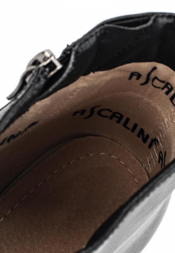 Ботильоны на каблуке Ascalini D2020-B2020K: изображение 5