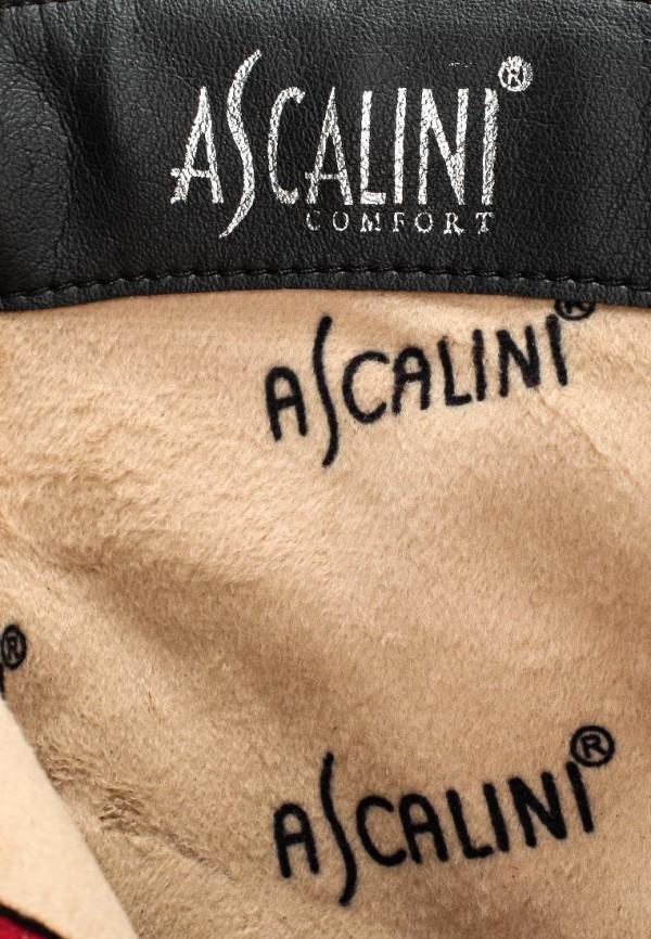Сапоги на каблуке Ascalini D16136: изображение 5