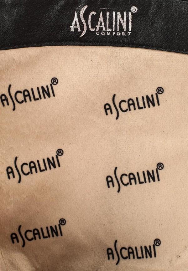 Женские сапоги Ascalini C16277: изображение 5