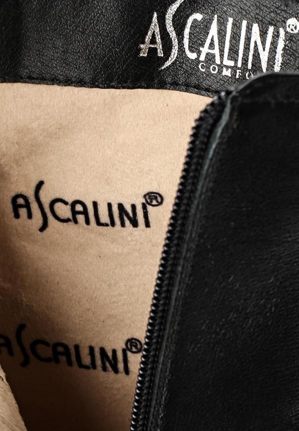 Полусапоги Ascalini D16611: изображение 5