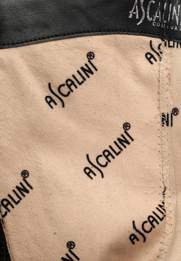 Сапоги на каблуке Ascalini C17081: изображение 5