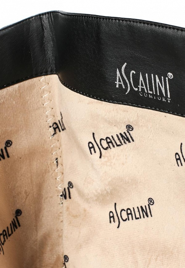 Женские сапоги Ascalini C14339: изображение 5