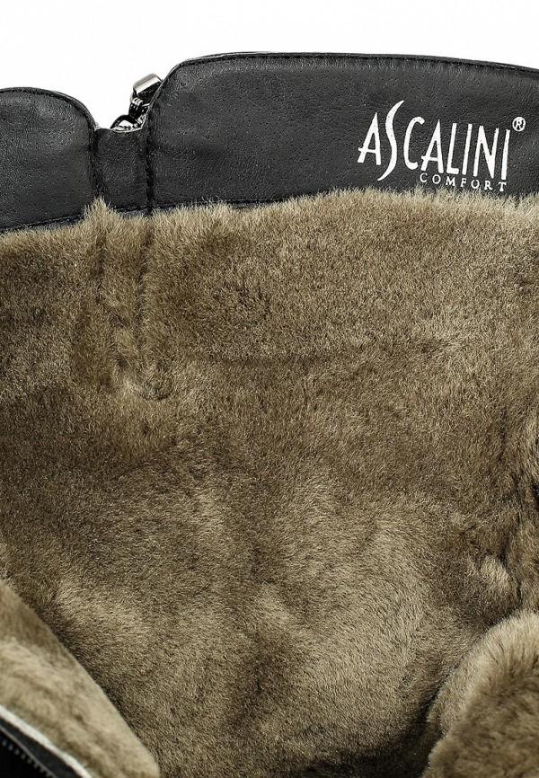 Сапоги на плоской подошве Ascalini B2890Z: изображение 5