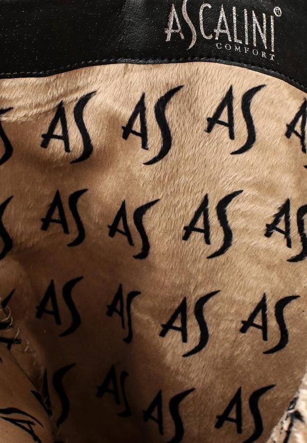 Женские сапоги Ascalini CE10817BFK: изображение 5