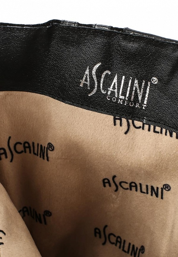 Женские сапоги Ascalini CE10911BFK: изображение 5