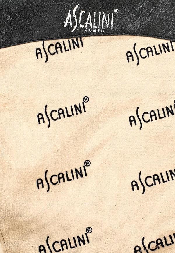 Сапоги на каблуке Ascalini C13766: изображение 5