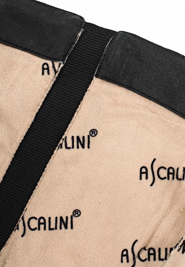 Женские сапоги Ascalini C13974: изображение 5