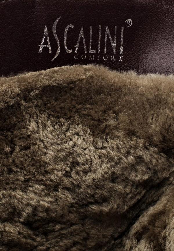 Полусапоги Ascalini DZ13977: изображение 5
