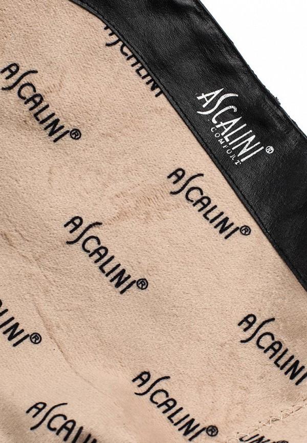 Сапоги на плоской подошве Ascalini CE14014: изображение 5