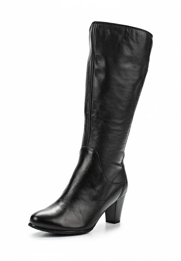 Женские сапоги Ascalini C14307: изображение 1