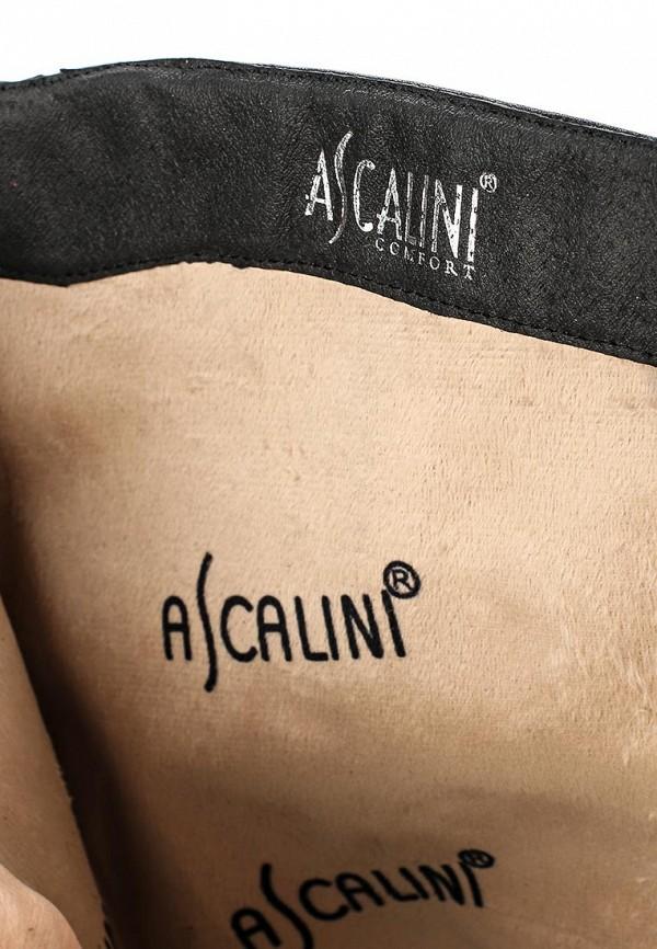 Женские сапоги Ascalini C14307: изображение 5