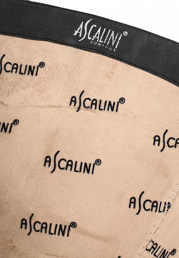 Сапоги на каблуке Ascalini C14823: изображение 5