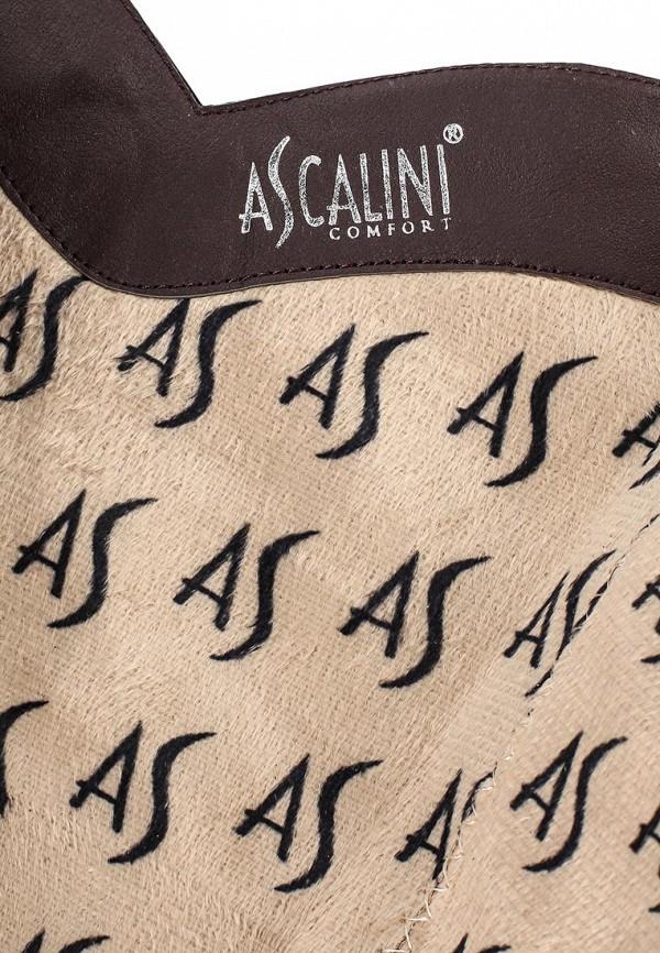 Женские сапоги Ascalini C8076EK: изображение 5
