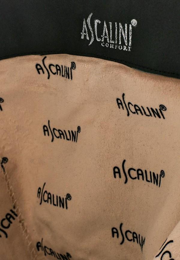 Сапоги на каблуке Ascalini CE15010B: изображение 5